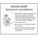 <i>Apocynum cannabinum</i> : INDIAN HEMP
