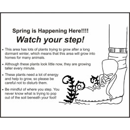 Watch Your Step - Spring is Happening Here!