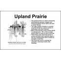 Upland Prairie