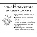 H: Honeysuckle