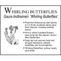 W: Whirling Butterflies